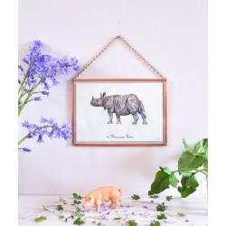 N°4. Le Rhinocéros blanc