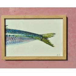 La sardine - vendu